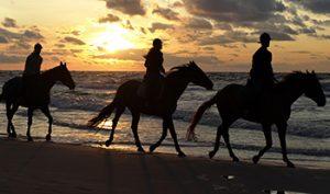 tours-horseback
